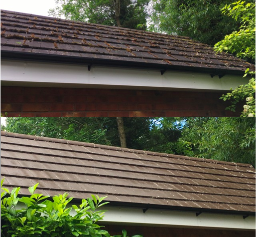roof cleaning telford